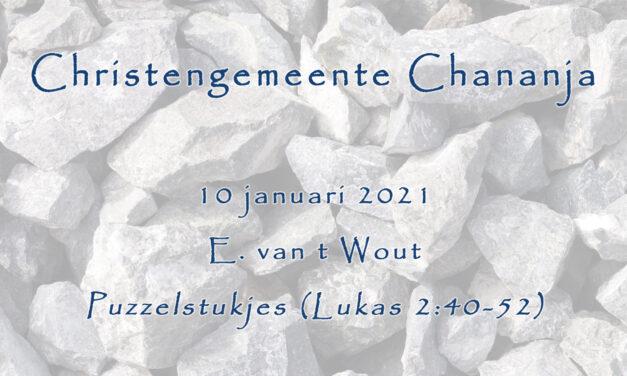 10-01-2021 – E. van 't Wout – Puzzelstukjes